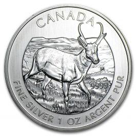 1 Oz Silver 2013 Wildlife Series Proghorn Antelope Coin